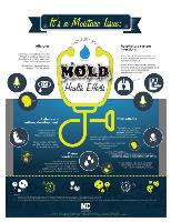Mold and Moisture Health Effects infographic factsheet